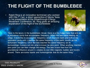 The-flight-of-the-bumblebee-300x225 The History of Free Energy. The Biggest Cover Up of All Time. (Video)