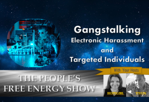 gangstalking-electronic-harassment-and-targeted-individuals-300x206 The Peoples Free Energy Show