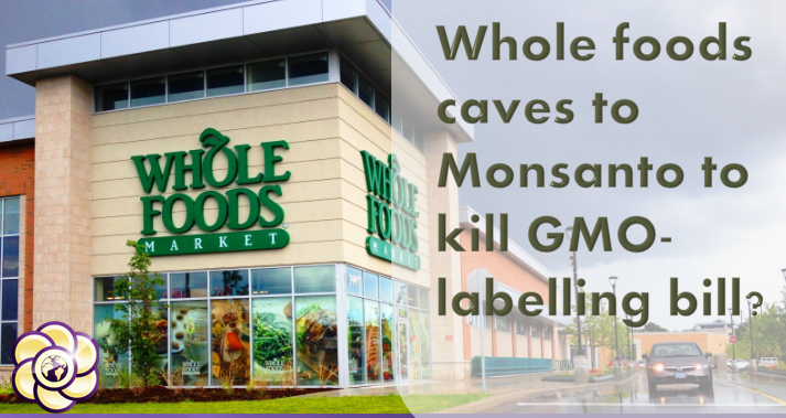 Whole foods caves to Monsanto to kill GMO-labelling bill