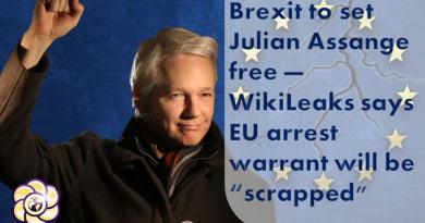 brexit to set julian assange free