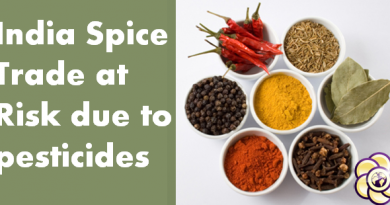 india spice trade at risk