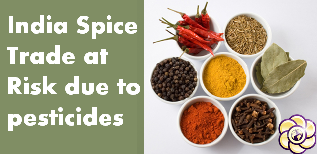 India's spice trade at risk, as pesticides and pathogens contaminate popular seasonings