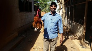 african-chicken-300x169 Fix the World Giving Report July 2016