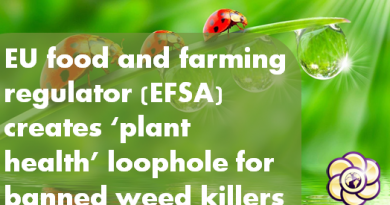 eu-loophole-for-banned-weedkillers