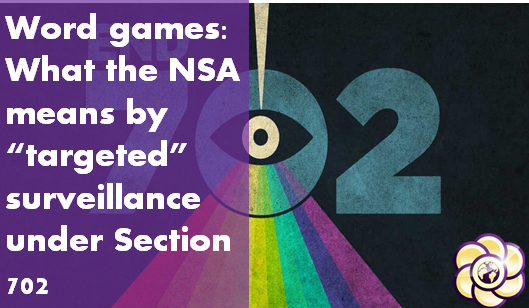 nsa-targeted-surveillance-section-702-hopegirl-blog