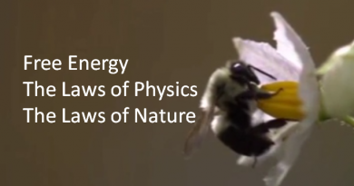 free-energy-the-laws-of-physics