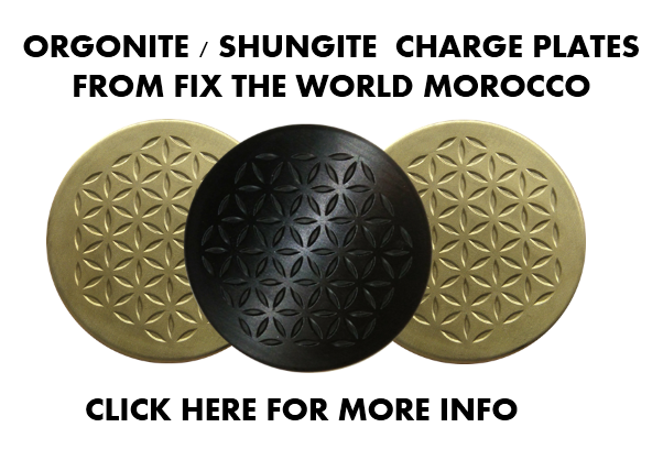 orgonite-shungite-charging-plates Food Preservation with Orgonite (Video)