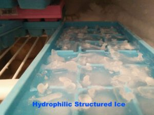 orgonite-structured-ice-freezer-300x225 Structured Water: Why is it so Good For you?
