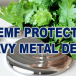 5G EMF Protection With a Heavy Metal Detox.