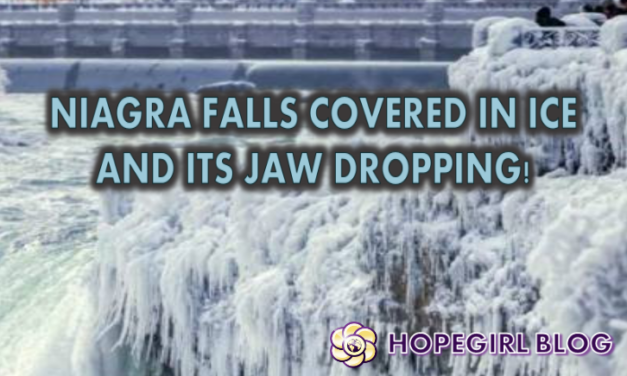 Niagara Falls is currently coated in ice and it's absolutely jaw-dropping