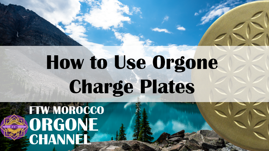 How do I use orgonite shungite charge plates to treat water?