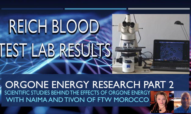 Orgone Energy Research Part 2 Reich Blood Test and Heraclitus Microscopic Research Laboratory (Video)