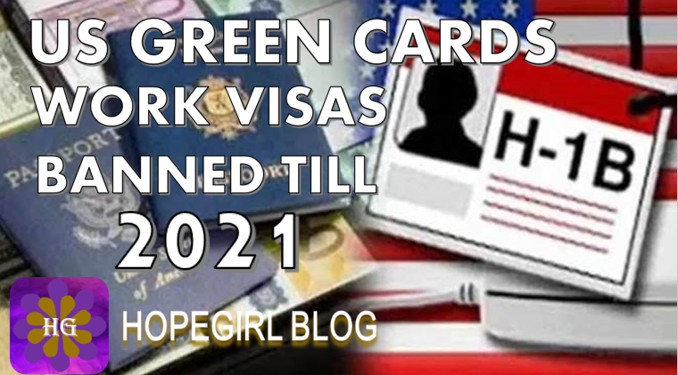 US Green Cards and Work Visa's Banned till 2021